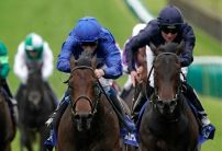 2000 Guineas betting: Where's the money going?