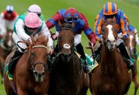 1000 Guineas betting: Where's the money going?