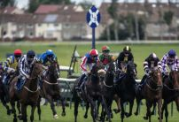 Saturday's Horse Racing Market Movers