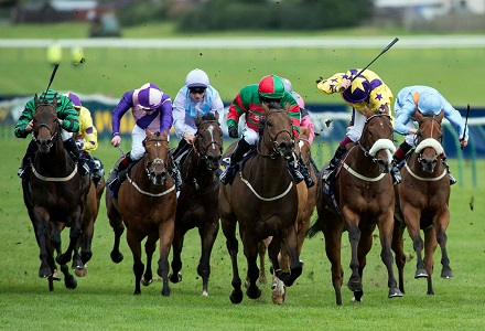 Johnny Barnes the pick of the punters for Ayr Gold Cup