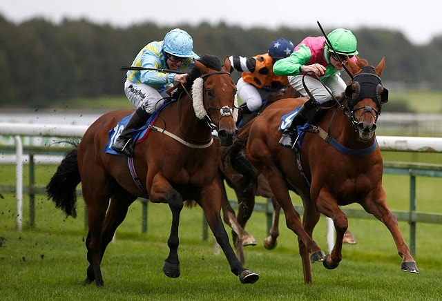 Horse racing ante post and daily info oddschecker betting betting dsi sports