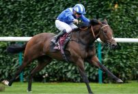 Battaash backed as Lady Aurelia not fancied for the King's Stand Stakes