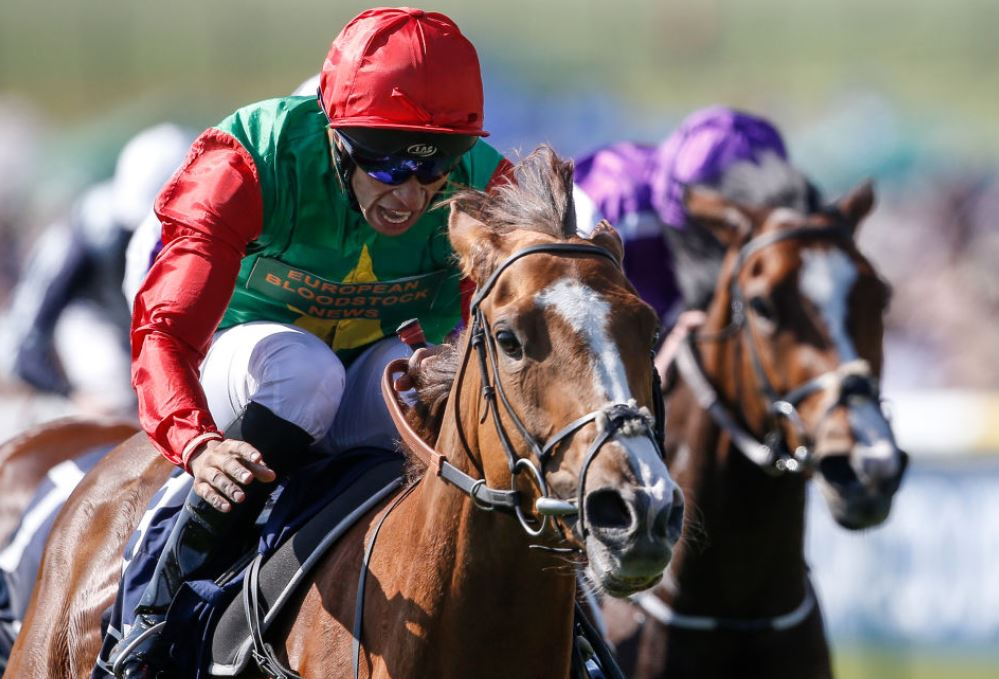Billesdon Brook a 66/1 winner of the 1000 Guineas - The Biggest Priced winner ever!