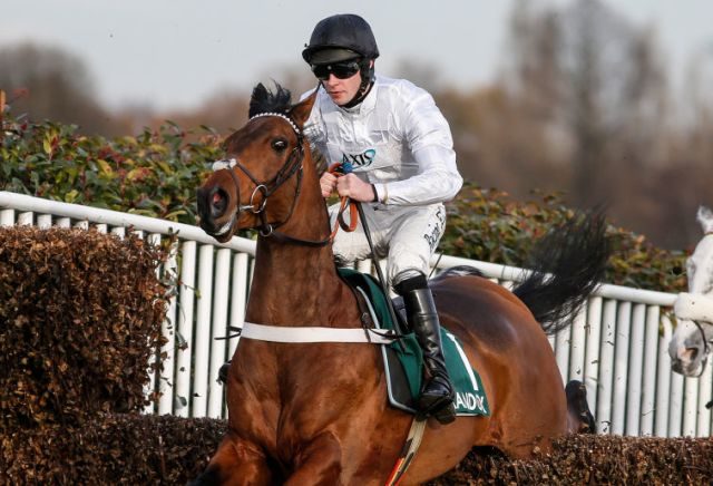 Punters gobble up value on Brain Power for Clarence House Chase