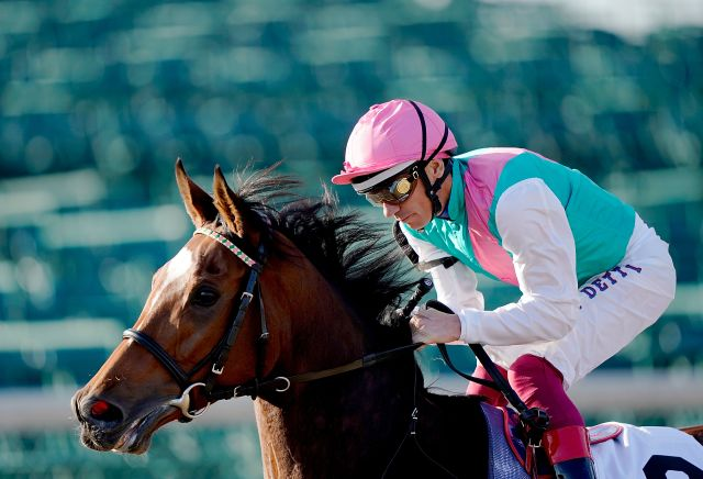 Coral eclipse betting odds binary options daily on youtube