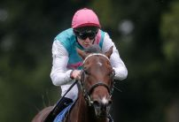 Calyx ruled out of the 2000 Guineas, scuppering 25% of ante-post bets