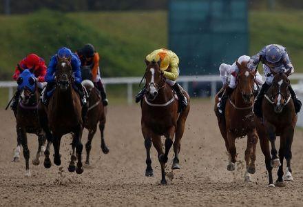 Market Movers: Thursday's best backed horses