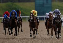 Horse Racing Market Movers