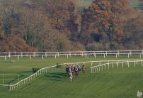 When do bookies think horse racing will return in the UK?