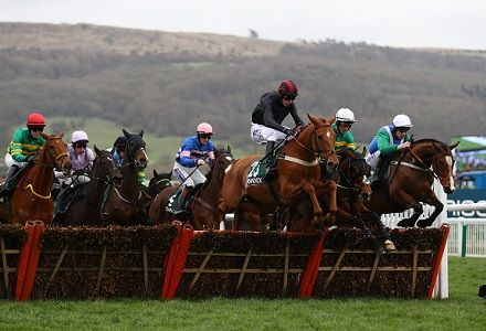 The five most backed horses at Cheltenham today
