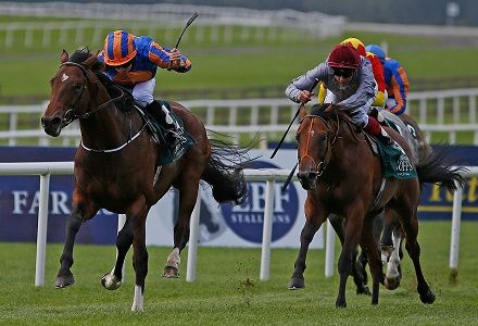 Irish Guineas betting preview: Punters swerve Churchill and Winter
