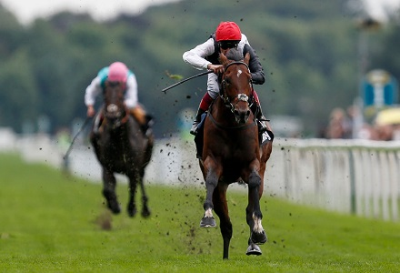 Punters pile in on Cracksman despite Arc uncertainty