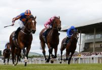John Gosden colt favoured by punters for the Irish 2000 Guineas