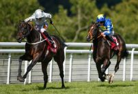 Boxing Day's Horse Racing Market Movers