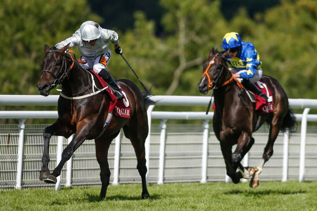 Dee Ex Bee battles Kew Gardens in punters' pick for the St Leger
