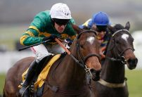 Defi Du Seuil Champion Hurdle gamble gathers pace