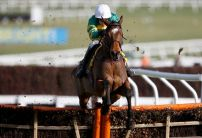 Defi Du Seuil powers to Triumph Hurdle glory
