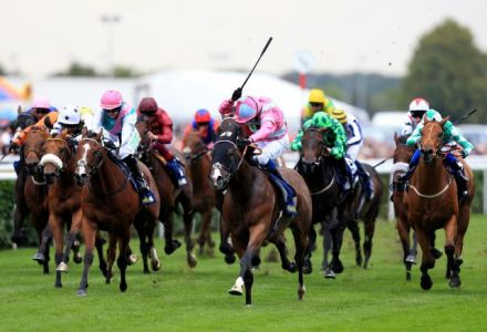 The most backed horses at the St Leger Festival today