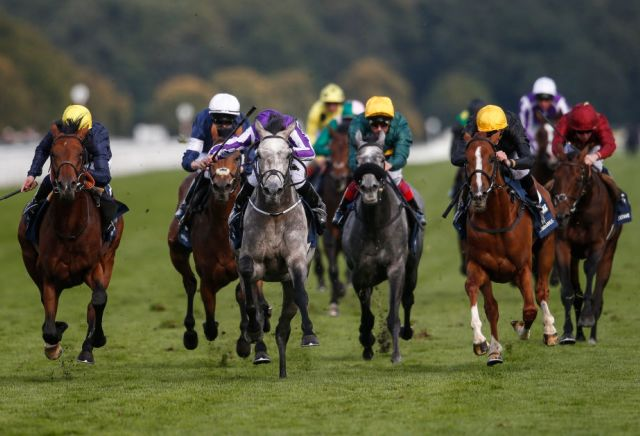 It's all Lah Ti Dar for the St Leger