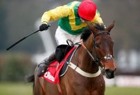 Finian's Oscar out of Cheltenham Festival after minor setback