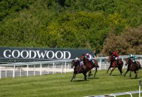 The most backed horses on Glorious Goodwood Day One