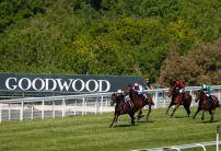 Sunday Horse Racing Market Movers