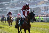 Bookies BLOODBATH: British bookmakers suffer biggest ever Grand National loss on Tiger Roll
