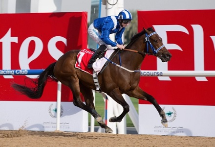 Crowley named number one jockey for Sheikh Hamdan