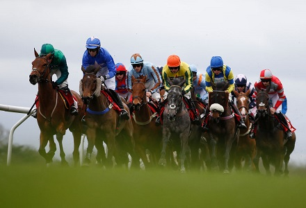 French recruit backed for Lanzarote Hurdle success