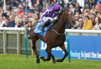Punters rush to back Kew Gardens for the St Leger