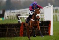 Impressive La Bague Au Roi odds cut for both Mares AND Stayers Hurdle