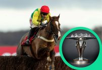 Winter Carnival: Ladbrokes Trophy Chase Betting Preview