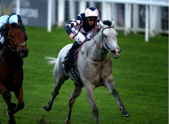 Lord Glitters backed to sparkle in Lincoln Handicap
