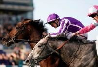 Magna Grecia becomes FAVOURITE for The Derby after 2000 Guineas win