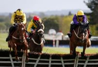 Strong support for Melon in International Hurdle betting