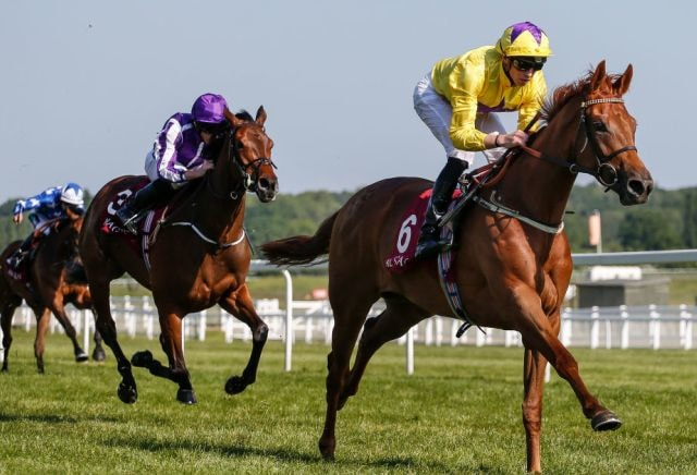 Sea Of Class' impressive victory sees her odds drastically cut for the Oaks