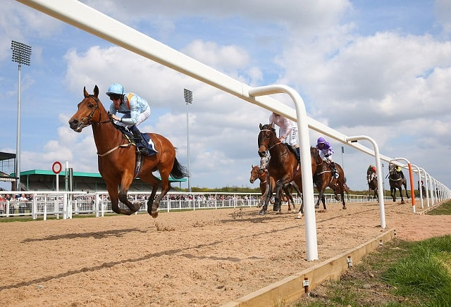 market movers horse racing