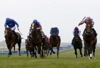 14/1 shot most backed for 1000 Guineas