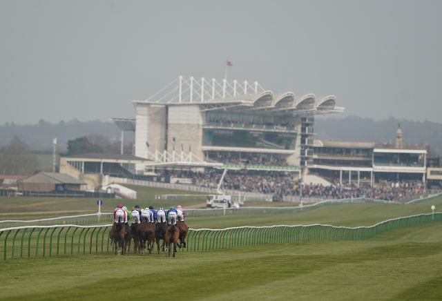 The three most backed horses at Newmarket today | Oddschecker