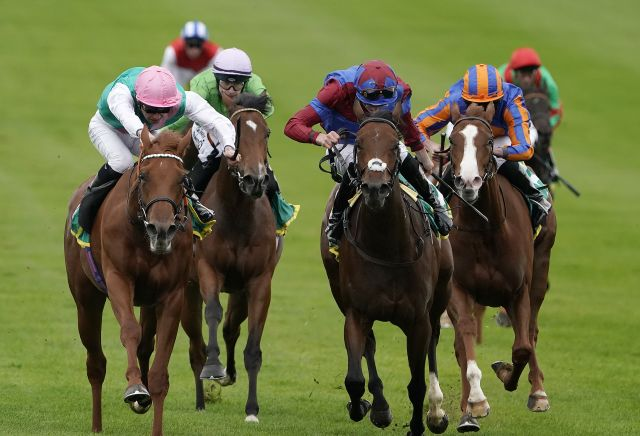 The most backed horses at Newmarket Future Champions Day