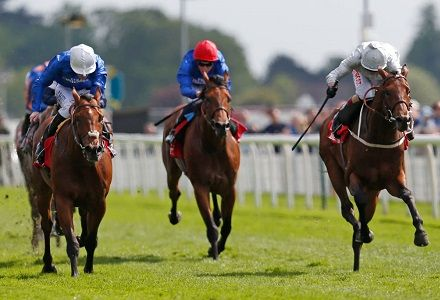 Ante Post Derby Betting: Who have Oddschecker punters been backing?