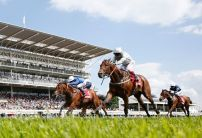 Cracksman new favourite for Derby despite missing Dante