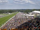 The most backed horses on Royal Ascot Day Five