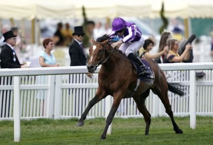 Punters side with Japan for Juddmonte International at Ebor Festival