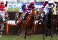 Samcro most backed horse of the Punchestown Festival