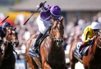Saxon Warrior dominating the betting following Coral Eclipse declarations