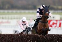 Singlefarmpayment the pick of Oddschecker punters for the Ladbrokes Trophy