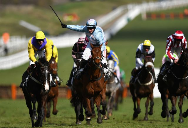Dead-heat horse racing betting trusted binary options websites for girls