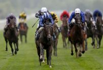 Dante Festival Betting: Who punters are backing on day two