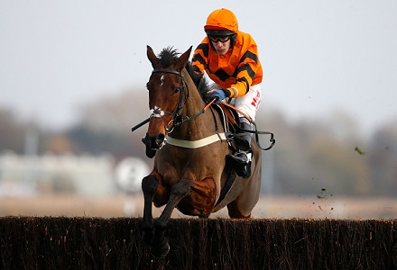 Which National Hunt stars shone over the holiday period?
